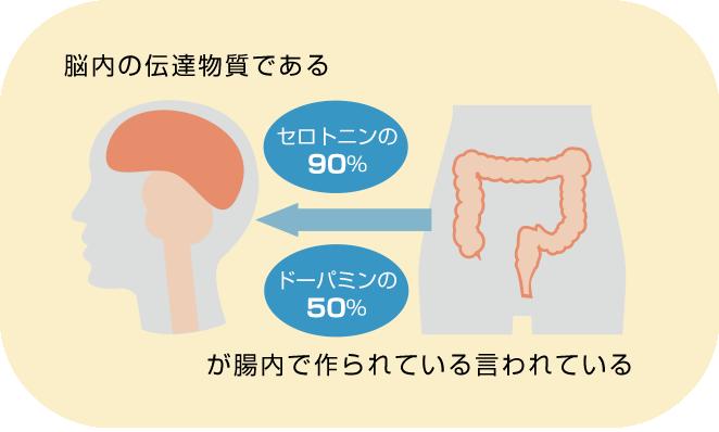 腸内でセロトニン、ドーパミン